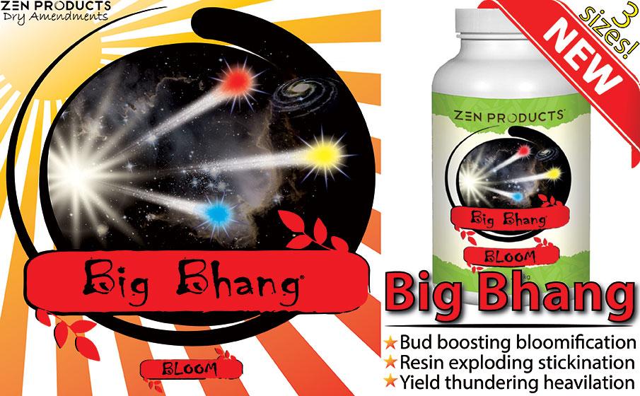 Big Bhang